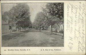 Portville NY Brooklyn St. c1910 Postcard