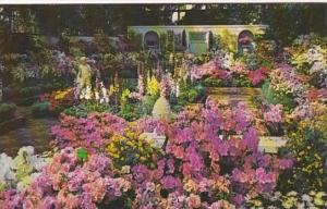 Missouri St Louis Annual Spring Show Missouri Botanical Garden