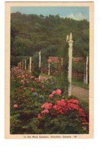 The Rose Garden, Hamilton, Ontario