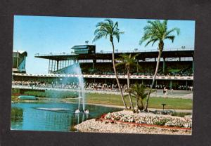 FL Greyhound Dog Racing Track Race ST PETERSBURG FLORIDA Postcard