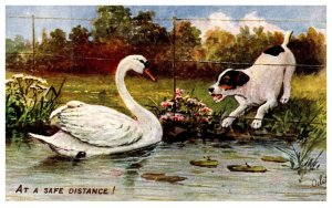 Dog ,   Swan and Puppy