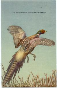 Linen of Chinese Ring Neck Pheasant Made South Dakota Famous