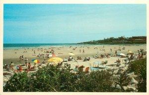 Ogunquit Beach Maine summer beach sun surf scene Postcard