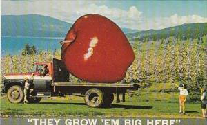 Exageration Large Apple On Truck Greetings From Okanagan Valley British Colum...