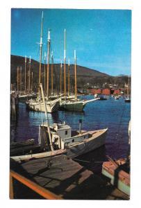 Windjammer Cruisers at Anchor Coastal Harbor Maine Sailing Boats Vntg Postcard