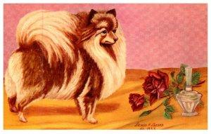 Dog , Pomeranian ,   artist signed  lewis H.larsen