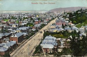 new zealand, DUNEDIN, Partial View (1910s)