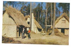 VA Jamestown James Fort Thatched Houses Virginia Postcard