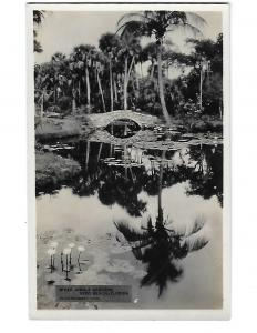 RPPC M'Kee Jungle Gardens Vero Beach Florida Photographic Concern