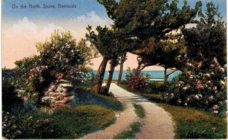 Bermuda North Shore  1910 Unused