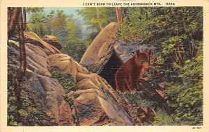 Can't Bear to Leave Adirondack Mountains, NY, USA Bear Unused