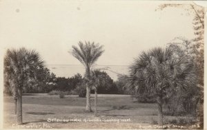 RP: CLEARWATER , Florida, 00-10s ; Belleview Hotel Grounds , Looking West