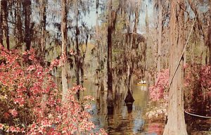 Cypress Gardens Berkeley County, South Carolina