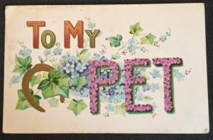 "Vintage Postcard Used Embossed Horseshoe  Flowers ""To My Pet.""  LB"