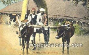 India Bullock Cart India Unused