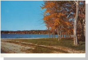 Dayville, Conn/CT Postcard, Alexander Lake Resort Area