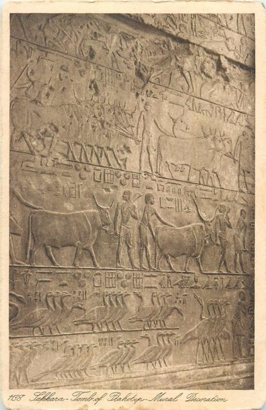 Tomb of Ptahotep Mural Decoration Egypt