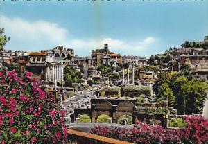 Citta Roma Rome Panorama del Foro Romano