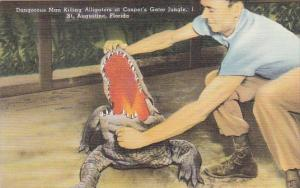 Florida St Augustine Dangerous Man Killing Alligators At Casper's Gator Jungle