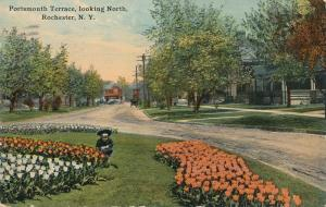 Tulip Flower Beds at Portsmouth Terrace Looking North Rochester New York pm 1914