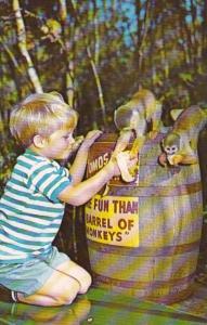 Florida Homosassa Springs Young Boy Feeding Monkeys At Barrel Of Monkeys