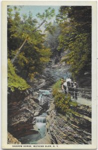 Watkins Glen New York Visitors in Shadow Gorge