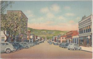 Linen Roadside RATON New Mexico NM  Postcard Hotel Stores Cars