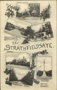 Strathfieldsaye Bendigo Victoria Australia Multi View c1910 Postcard