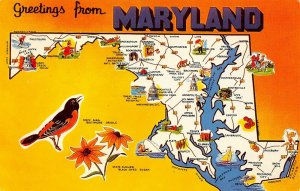 LP95   State Map  Maryland    Postcard