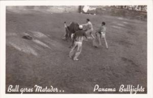 Panama Bull Fight Matador Being Gored By Bull Panama City Real Photo