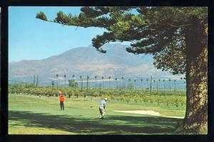 Filmore, California/CA Postcard, Elkins Ranch Golf Course, Golfing