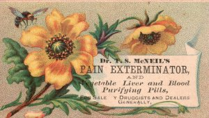 1880s-90s McNeil's Pain Exterminator Harrisburg PA Flowers Bee Trade Card