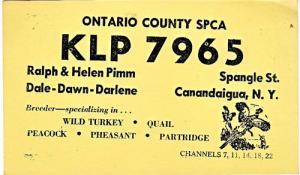 CB QSL KLP7965, Ralph & Helen Pimm, Canandaigua NY