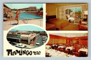 Tucson AZ- Arizona, Flamingo Motor Hotel, Pool, Chrome Postcard