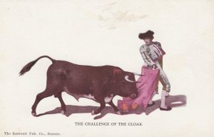 The Challenge of the Cloak , Bull Fighting , 00-10s