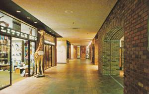 The Attractive Shopping Area In The Place De Ville Centre, Ottawa, Ontario, C...