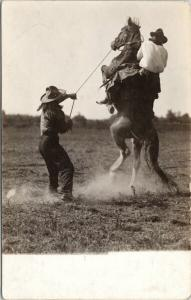 Cowboys Breaking Bucking Horse Unknown Location UNUSED Real Photo Postcard E49