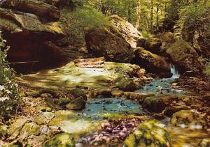 Luxembourg Hallerbach Promenade H Beaufort Haller Creek Forest
