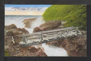 Driftwood Bridge,Devil's Churn,Cape Perpetua,OR Postcard