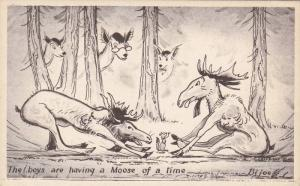 AS:  The boys are having a Moose of a time, Deer, Squirrel, Bijoe, 10-20s