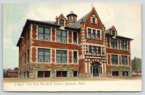 Ypsilanti Michigan~New Woodruff School~1911 Color Rotograph Postcard