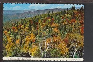 Soco Gap on the Blue Ridge Parkway Postcard BIN