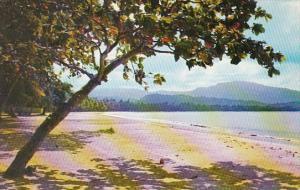 Puerto Rico Loquillo Beach With El Yunque