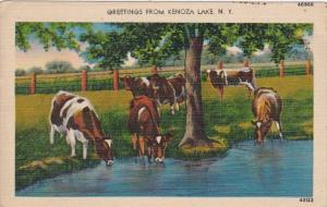 New York Greetings From Kenoza Lake 1945