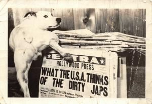 F37/ Interesting Real Photograph Non-Postcard Photo Dog Pee Propaganda WWII