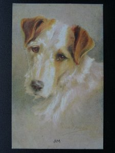Wire Haired Terrier Dog JIM by Artist Persis Kirmse c1914 Postcard by Photochrom