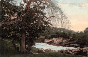 OMAGH COUNTY TYRONE IRELAND UK LOVER'S WEEPING WILLOW POSTCARD 1910s