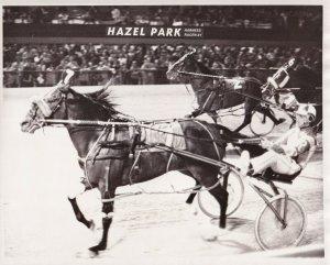 HAZEL PARK RACEWAY, Harness Horse Race, BEWITCHING DANDY wins, 1977