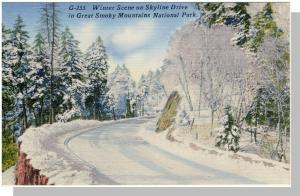 Smoky Mountains Nat'l Park,Postcard,NC/TN, Winter,Near Mint!