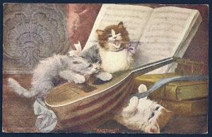 Cats Playing a Mandolin w/Music Book used c1911